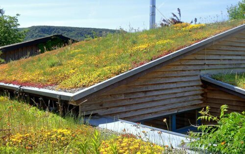 Green Roofing-2
