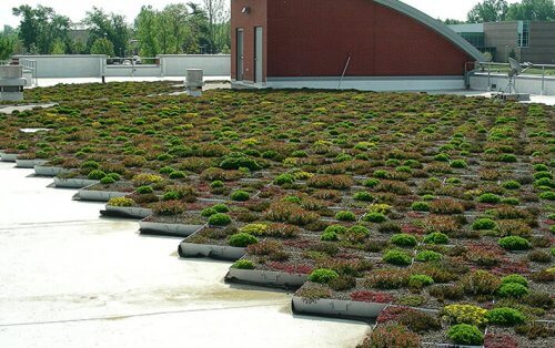 Green Roofing-3